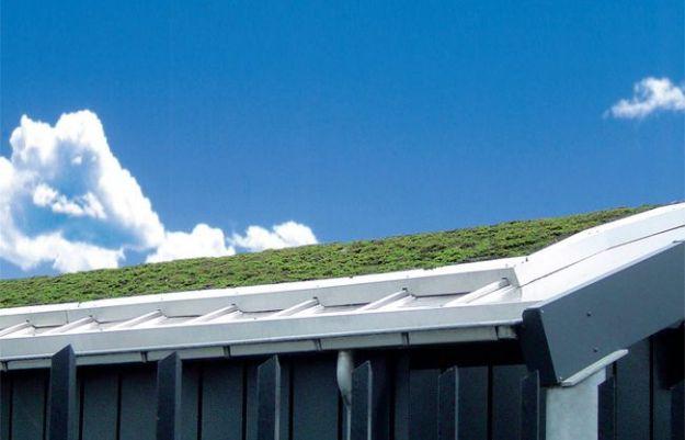 pannelli fotovoltaici verdi