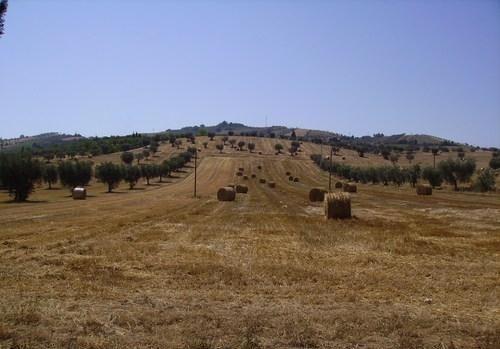 terreni_agricoli_edilizia_italia