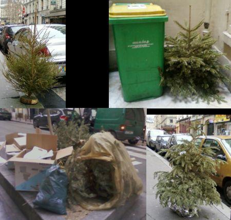 albero_natale_smaltimento_rifiuti