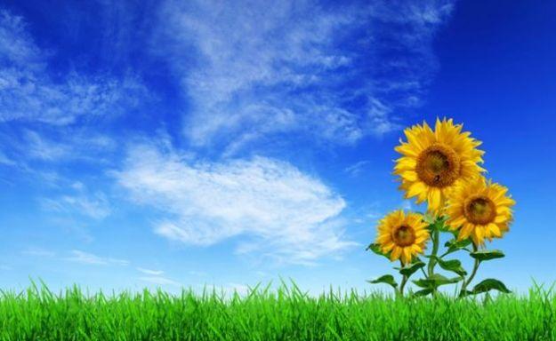 decreto milleproroghe sostenibilita ambientale