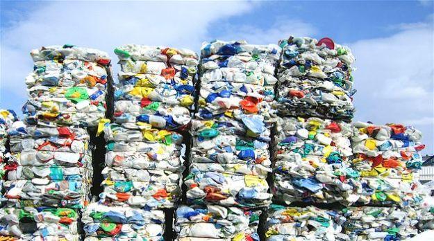 sacchetti biodegradabili nuovo emendamento