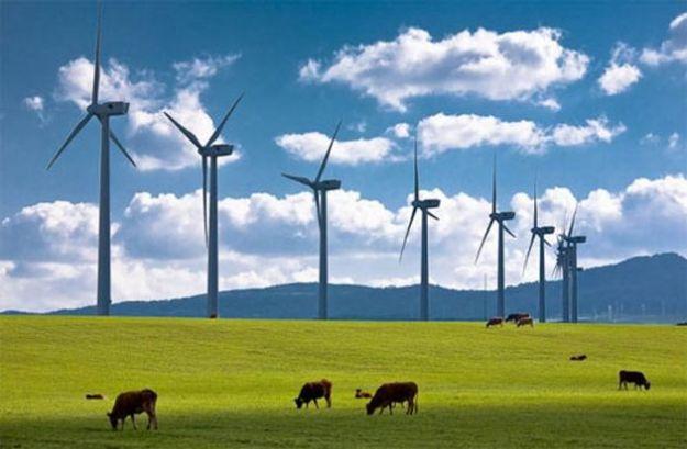 energie rinnovabili anev eolico