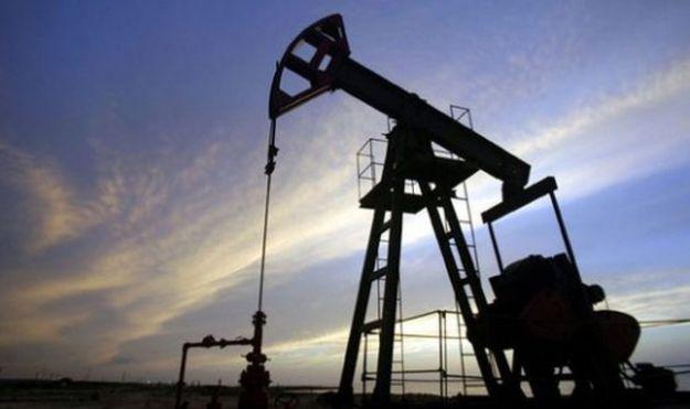 trivellazioni cilento rischi ambientali