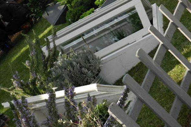 riciclo vecchie finestre piante rampicanti