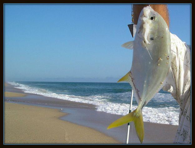 pesca_italia_settore_ittico
