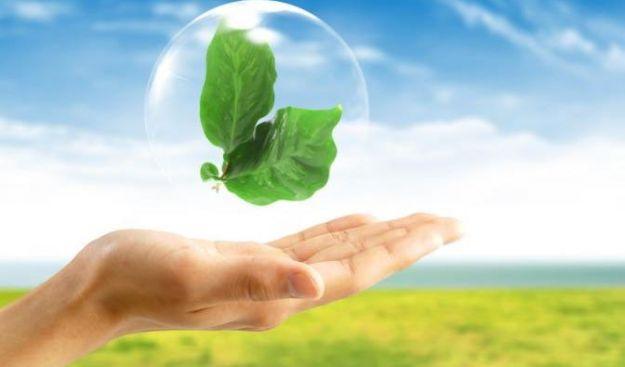 tutela ambientale attivisti rischio