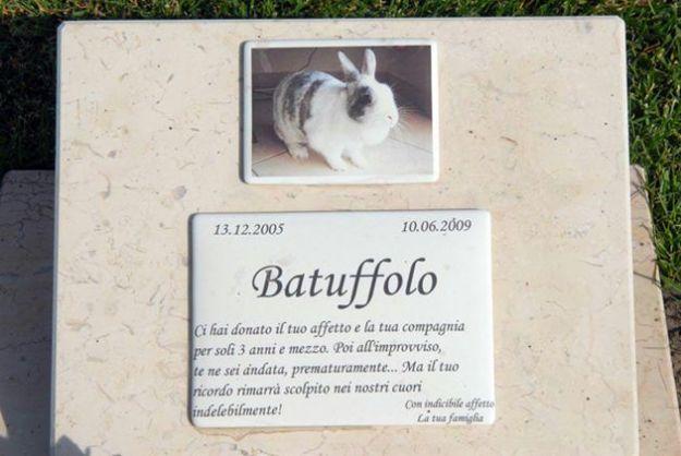 agenzia funebre animali italia funeral planner