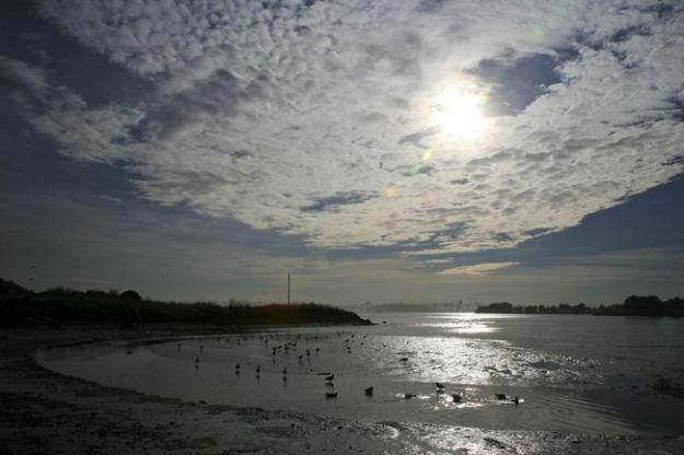 inquinamento mare petrolio acqua