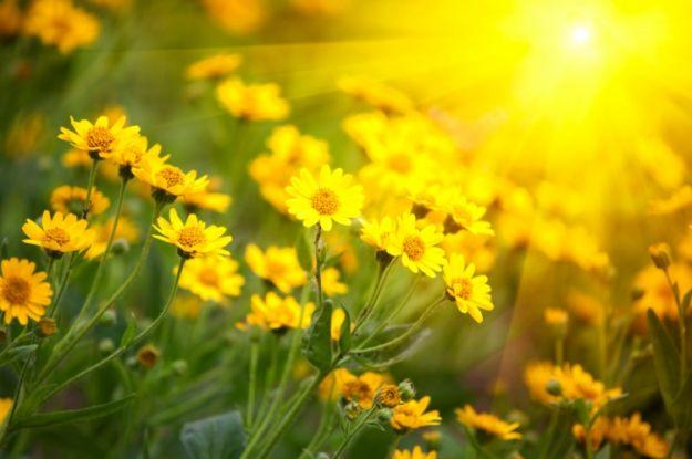 equinozio di primavera