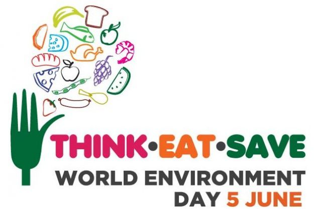 giornata mondiale ambiente 2013 5 giugno
