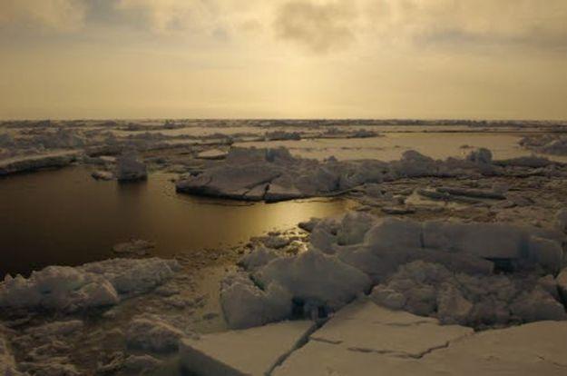 cambiamenti climatici vertice