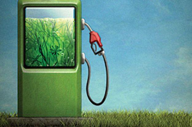 auto ecologica a urina