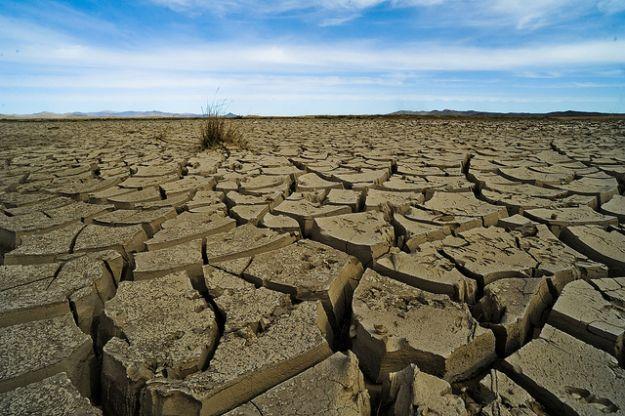 cambiamenti climatici violenza