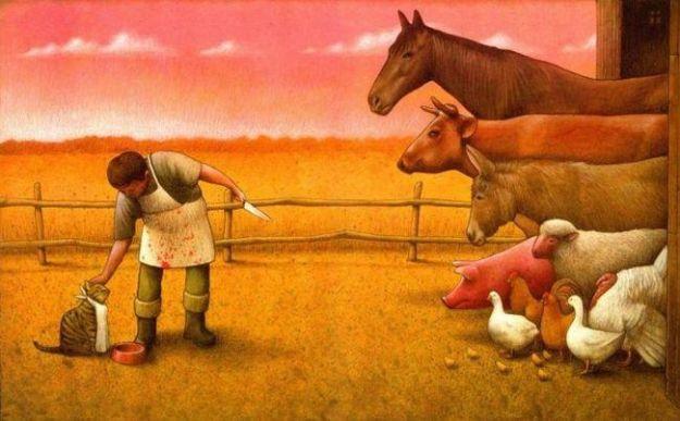 cibo per animali veg