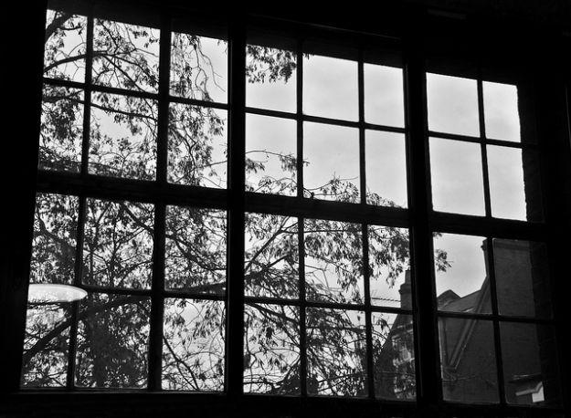 finestre_del_futuro