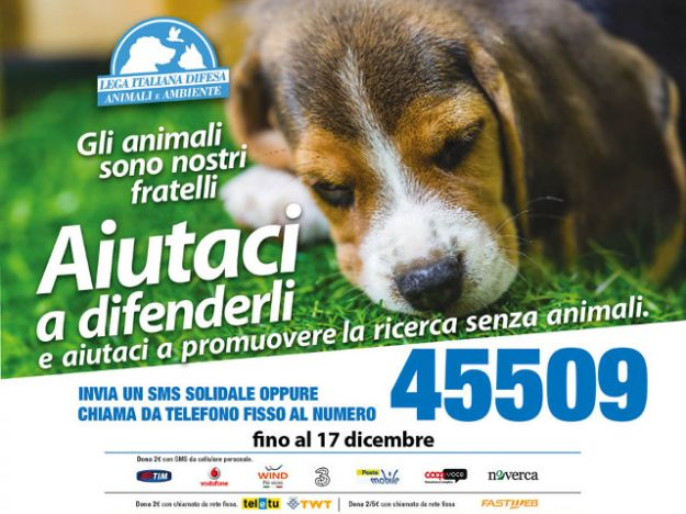 CAMPAGNA SMS SOLIDALE LEIDAA 2014 orizzontale