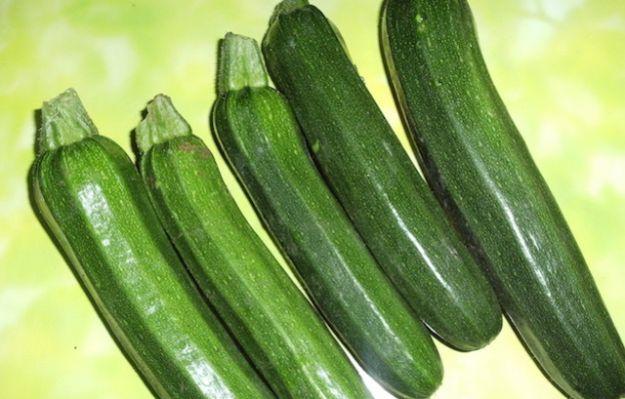 come coltivare le zucchine nell orto