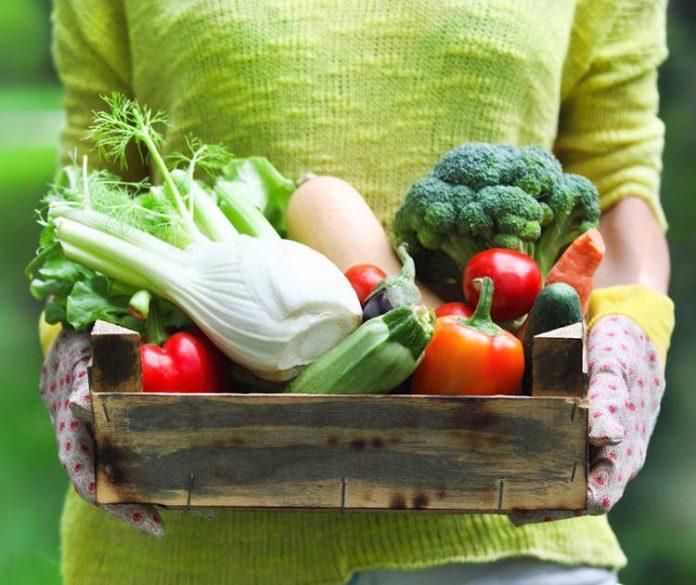 Che verdura ti rappresenta test