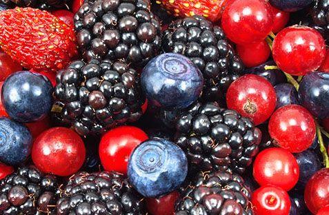 frutti di bosco alimenti antitumorali