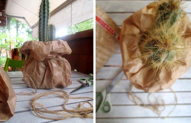 vaso con sacchetto di carta