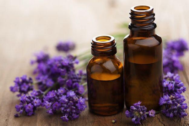 olio essenziale lavanda vacanze ecologiche