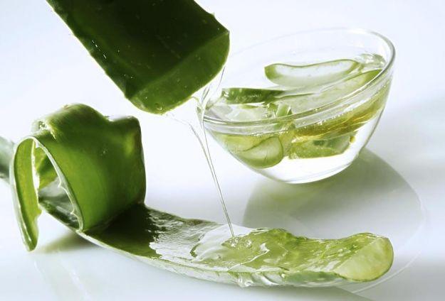 gel di aloe vera modi usarlo