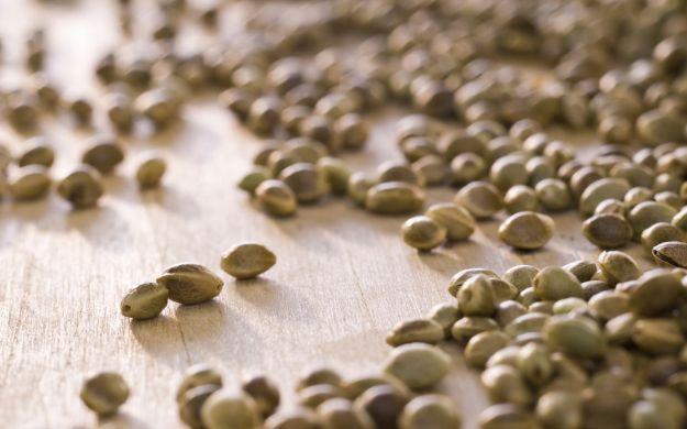 effetto antinfiammatorio semi di canapa