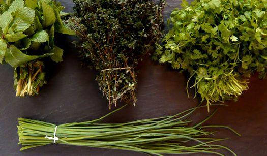 erbe aromatiche giardino biodinamico