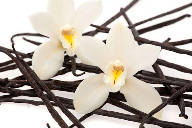 vaniglia proprieta benefici ricette