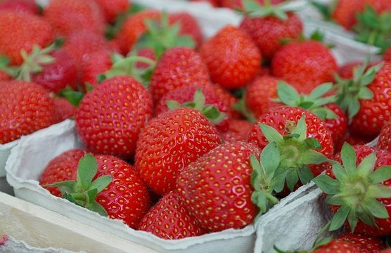 fragole frutti rossi
