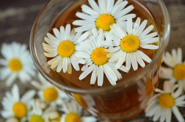 fiori commestibili quali sono come si usano cucina