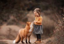 Test che animale sei in base alla personalità