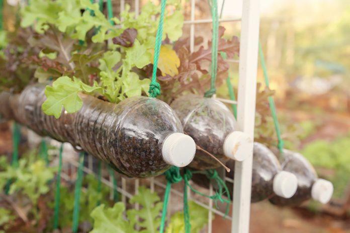 Orto verticale con bottiglie di plastica