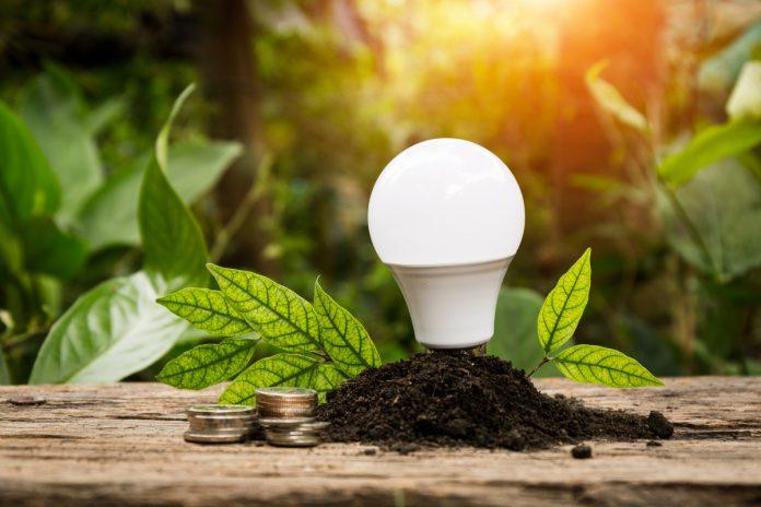 Una lampadina a led a risparmio energetico
