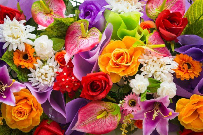 Test che fiore sei: quale fiore ti rappresenta