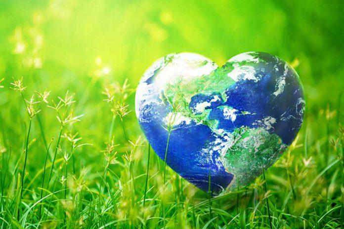 Pianeta Terra a forma di cuore su di un prato verde
