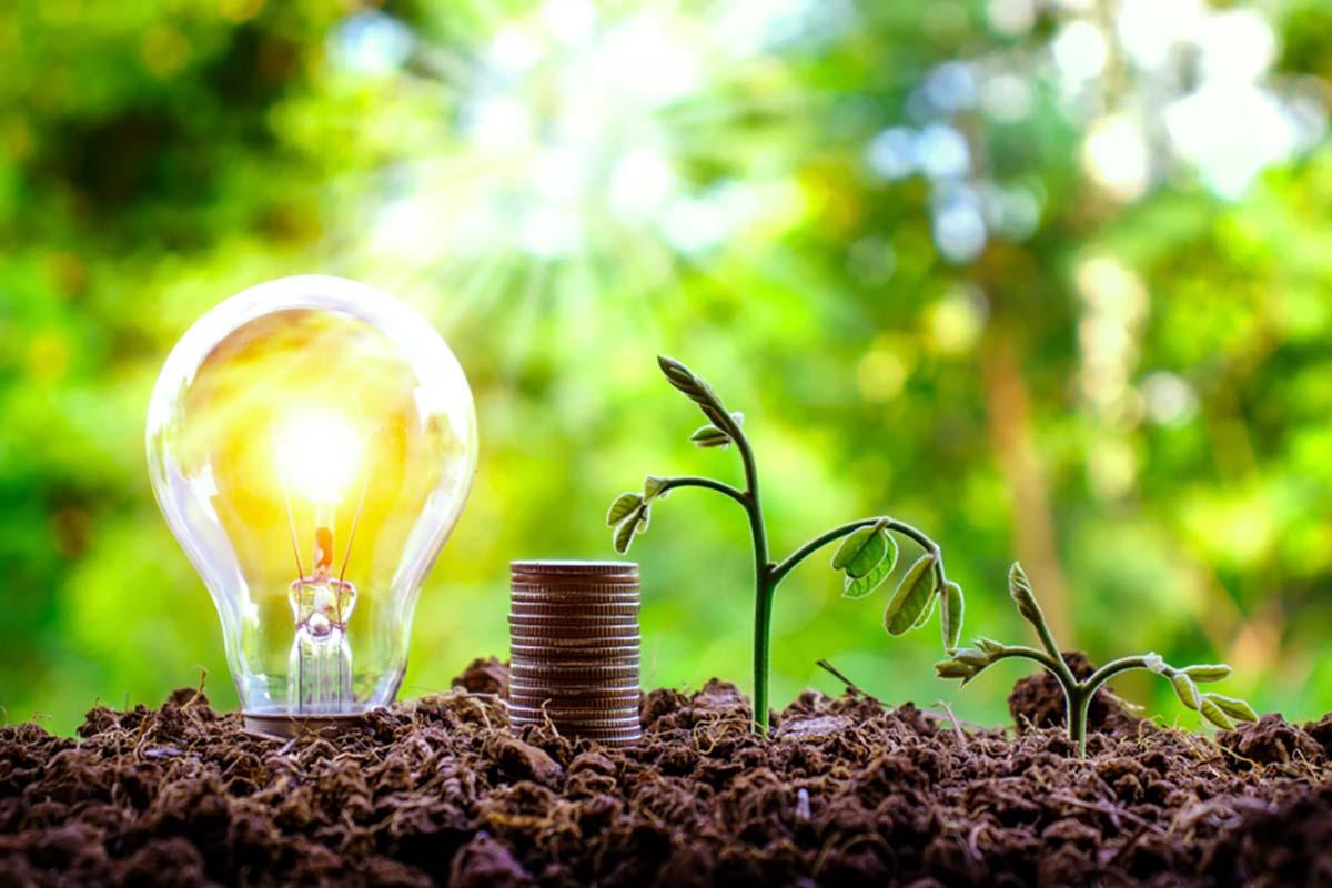Energie rinnovabili scelta consapevole