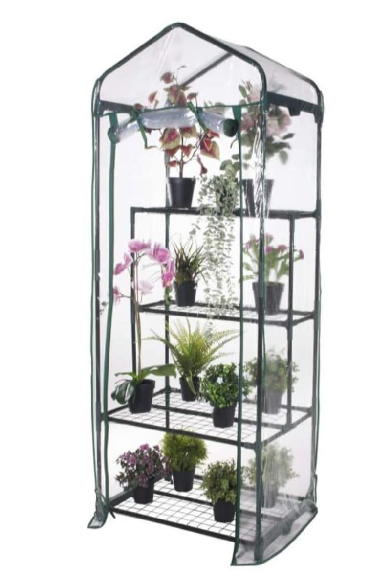 Piccola serra da giardino con piante inclusa in offerte Amazon