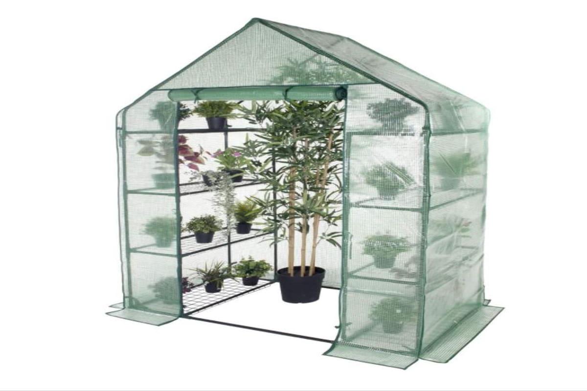 Grande serra da giardino con piante inclusa in offerte amazon