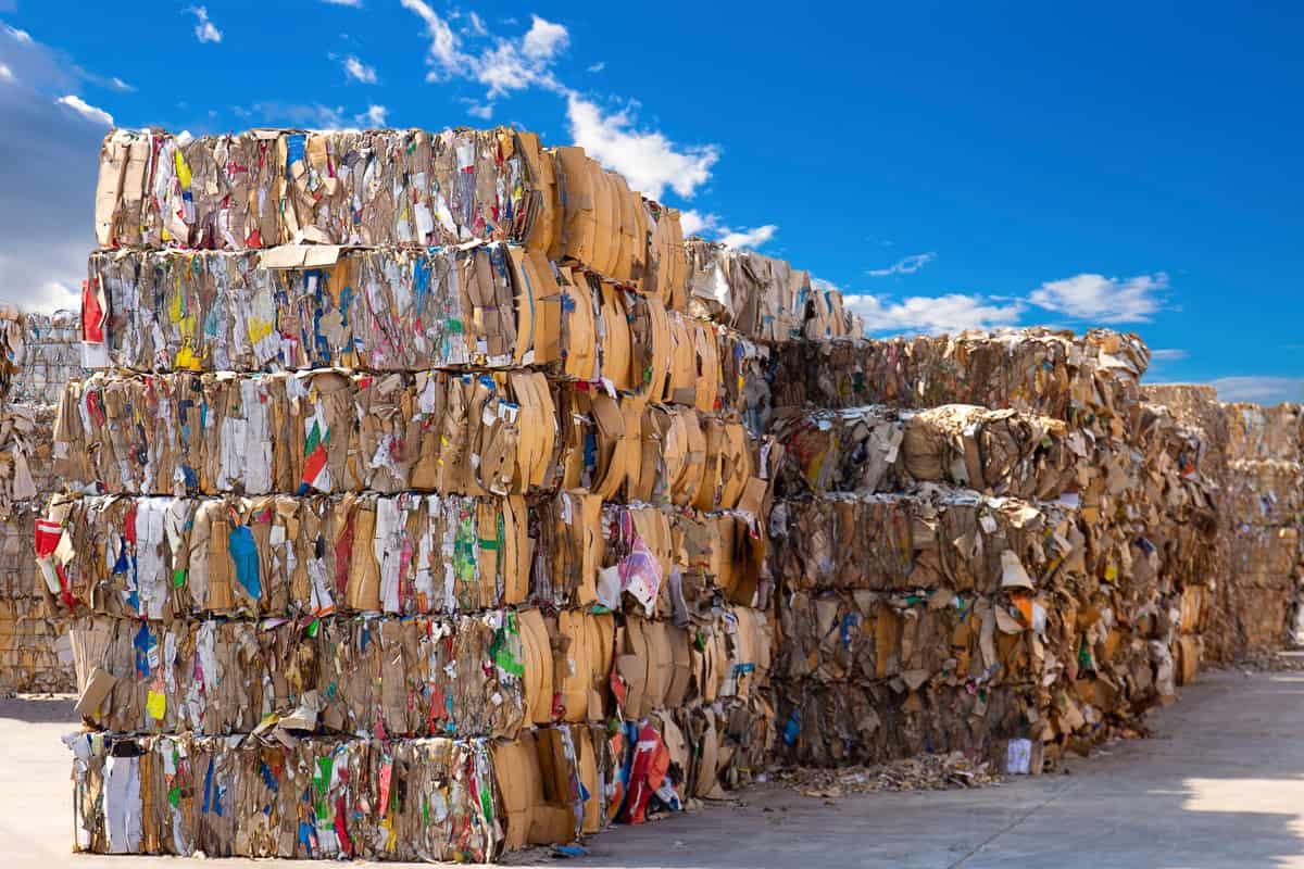 balle di carta da riciclare in un impianto di riciclo