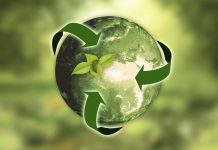 impatto ambientale aziende