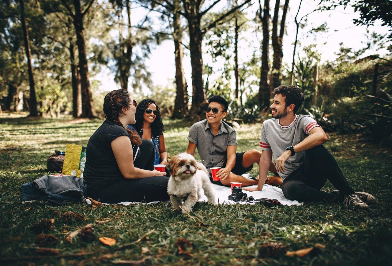 ragazzi seduti sul prato fanno un picnic